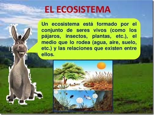 ecosistema-nivel-bsico-parte-ii-2-638[1]
